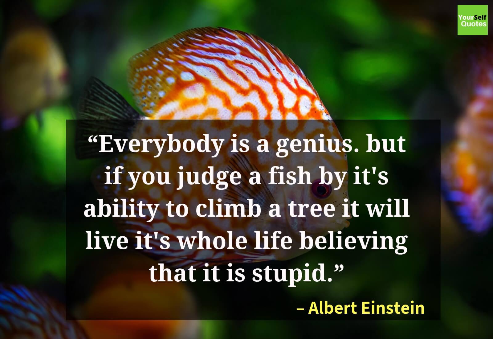 AlbertEinstein Quotes