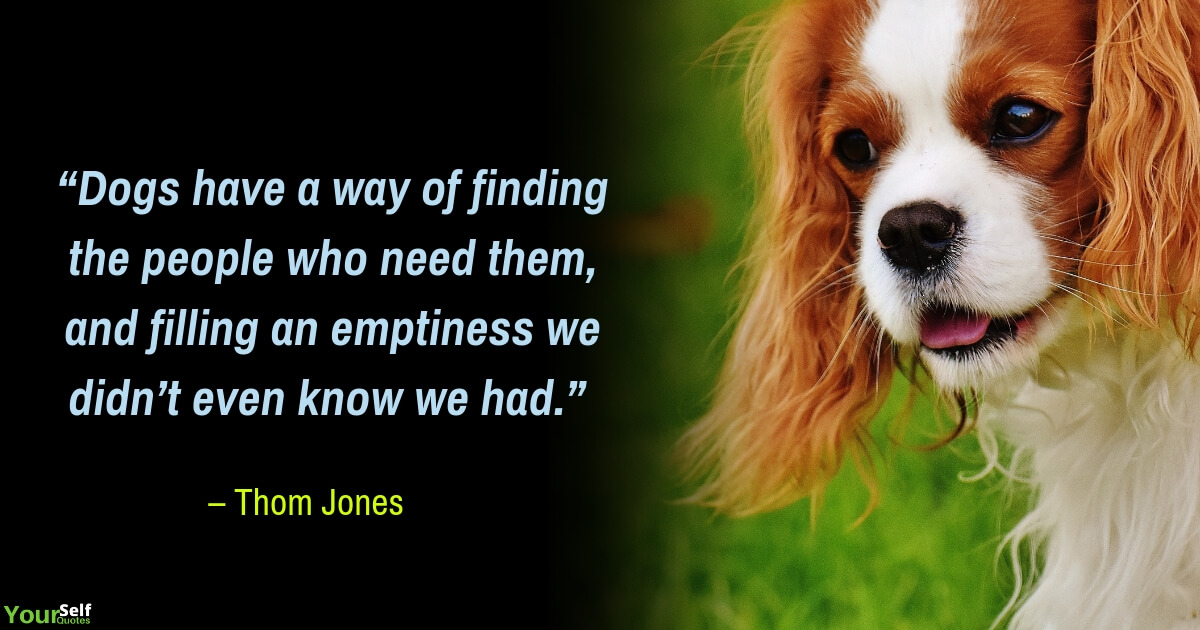 Dog Quotes Images