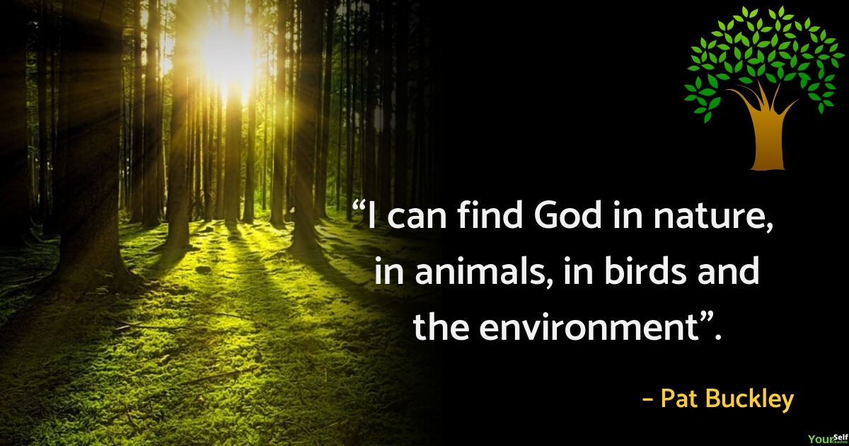 Environment Quotes Slogans by Pat Buckley