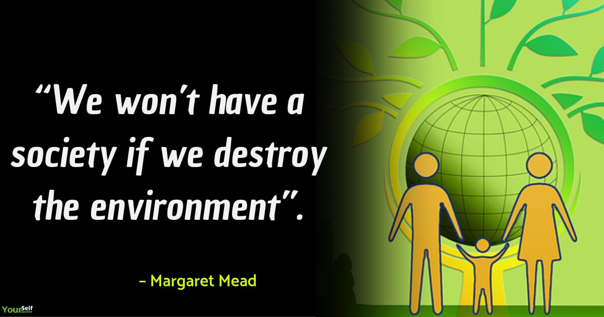 Environment Quotes by Margaret Mead