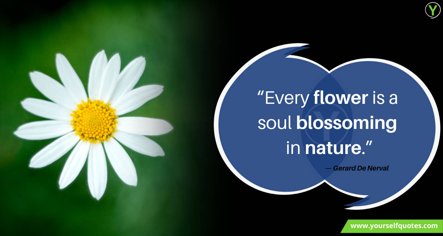 Flower Quotes On Nature by Gerard De Nerval