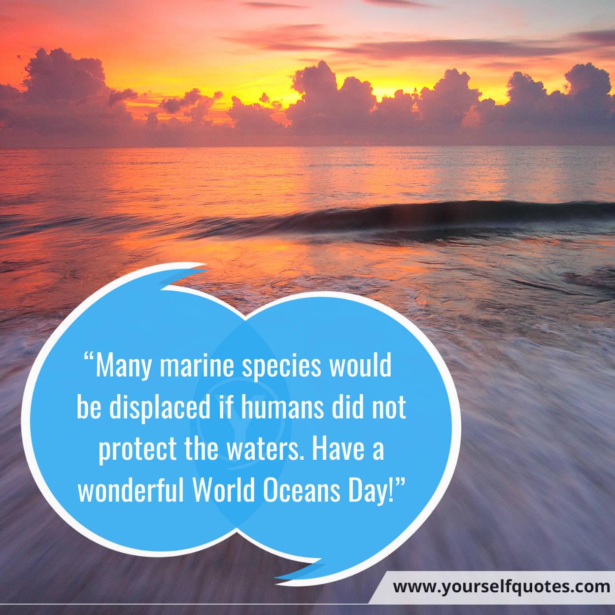 Foto Pesan Selamat Hari Laut Sedunia