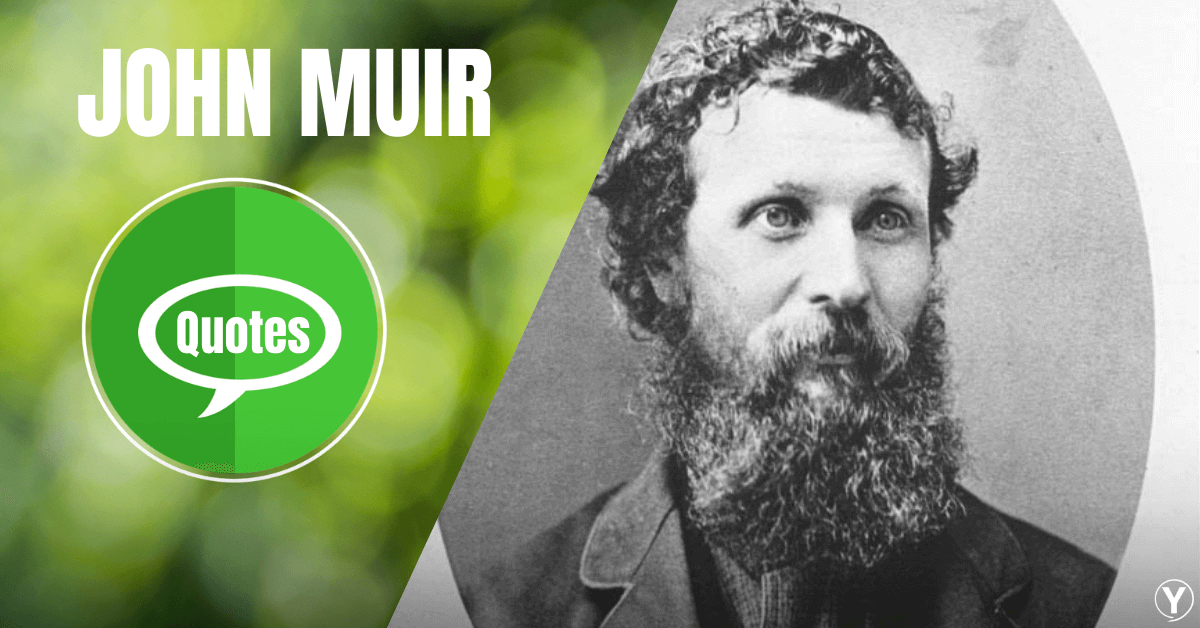 John Muir Quotes To Connect Into Reality