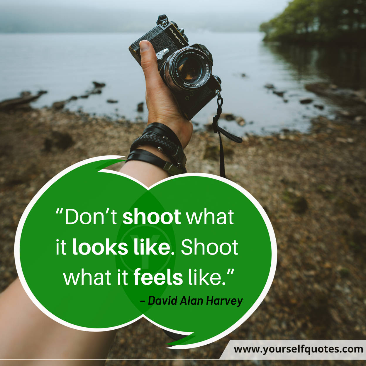 Photography Quotes by David Alan Harvey
