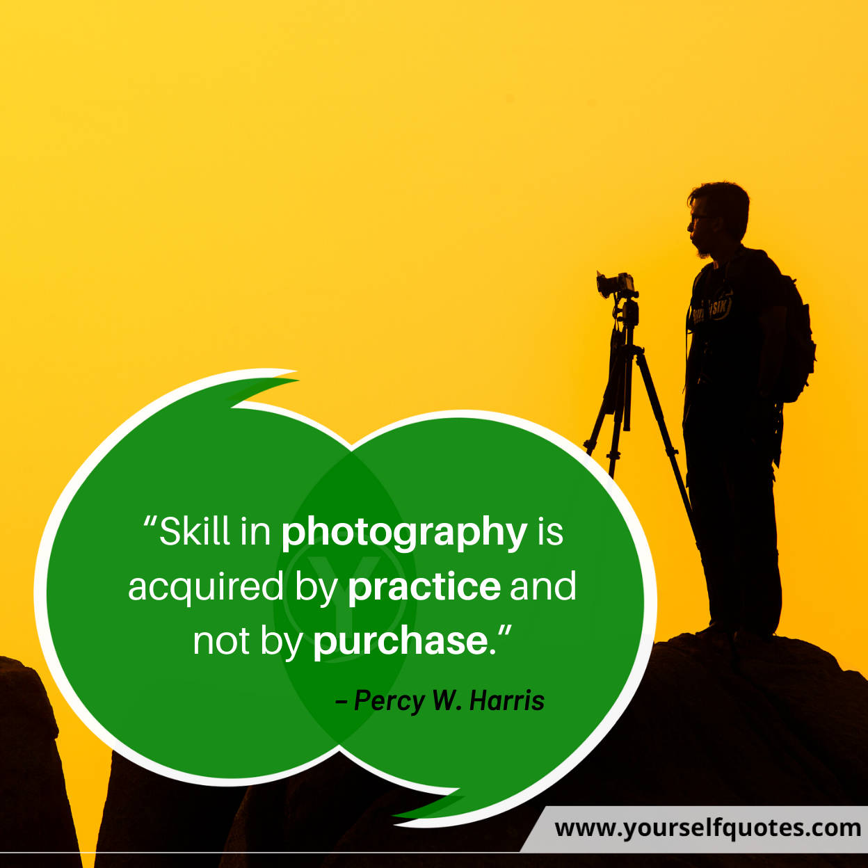 Photography Quotes by Percy W. Harris