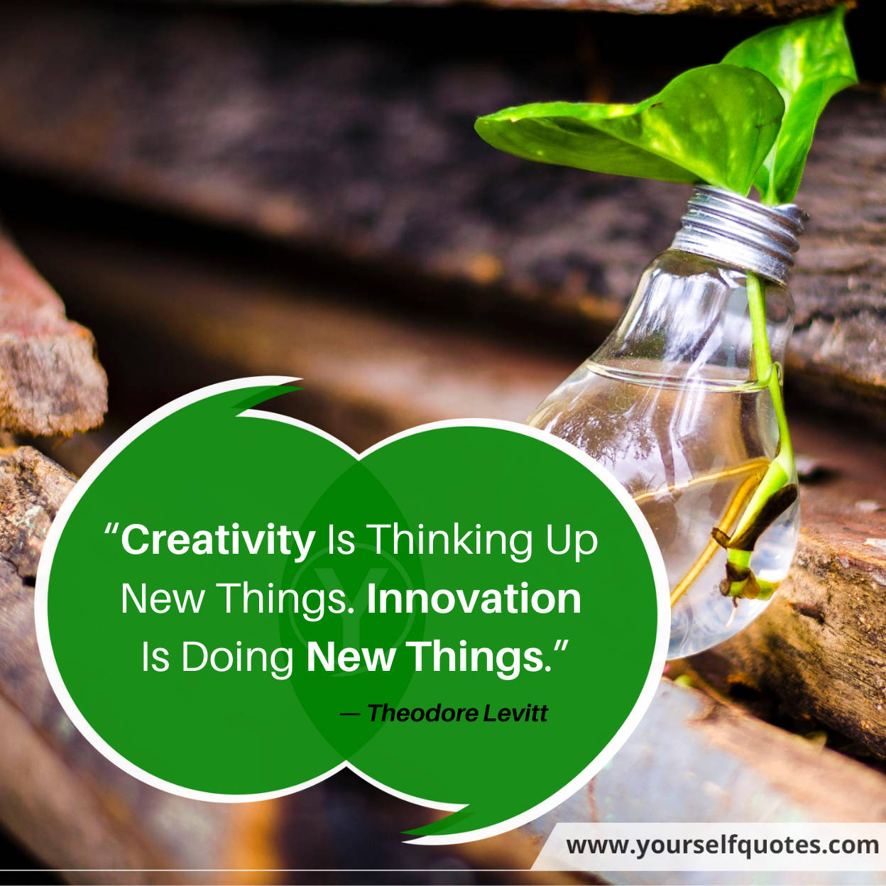 Quotes About Creativity Images