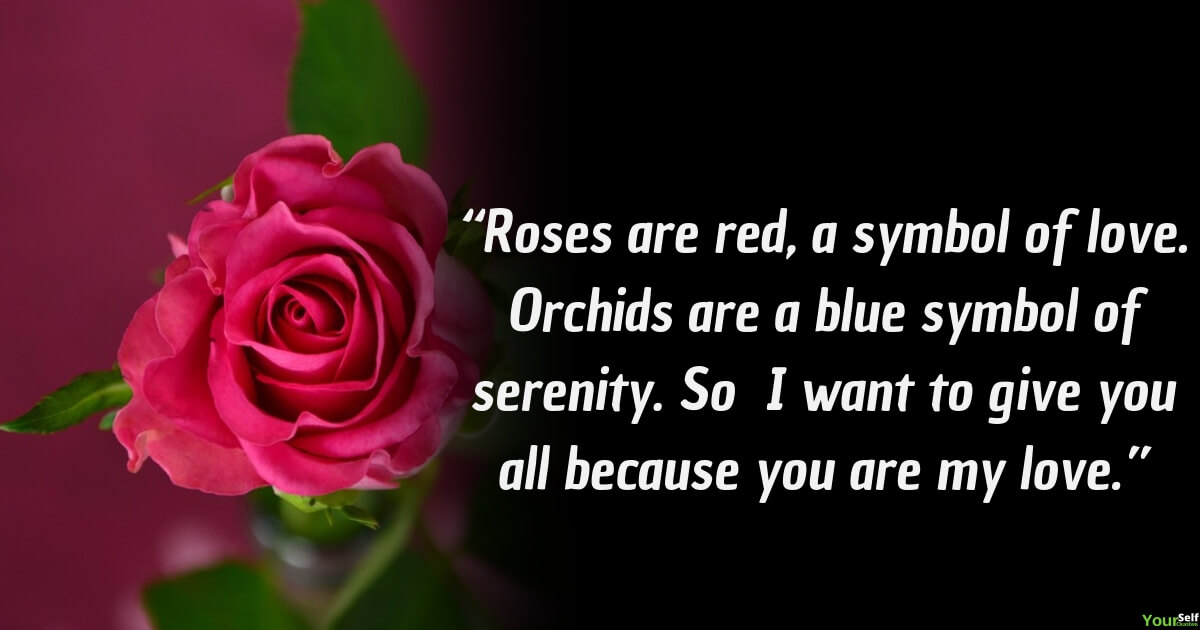 Rose Flower Quotes