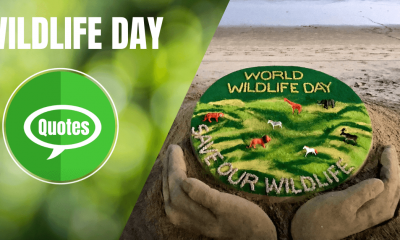 World Wildlife Day Quotes Wishes
